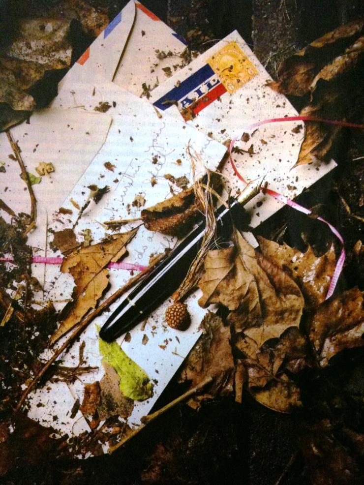 The writer's sword - Now Extinct